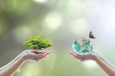 Siéntete guapa protegiendo al medio ambiente: cinco claves que debes seguir