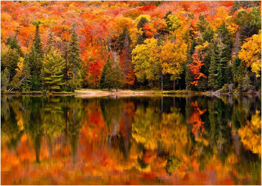Voyage de noces extra : prenez un grand bol d'air frais au Canada !