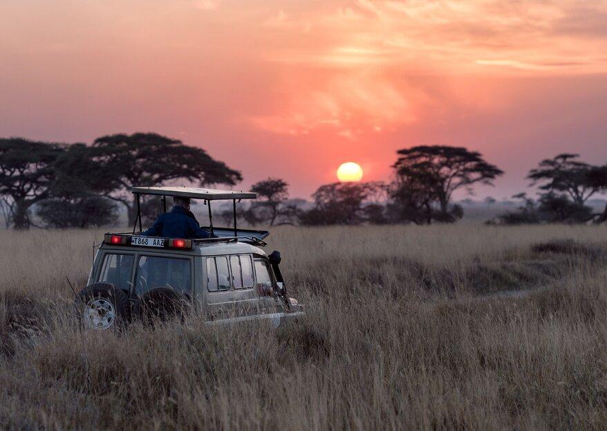 Luna di miele in Sud Africa: la magia di un continente unico