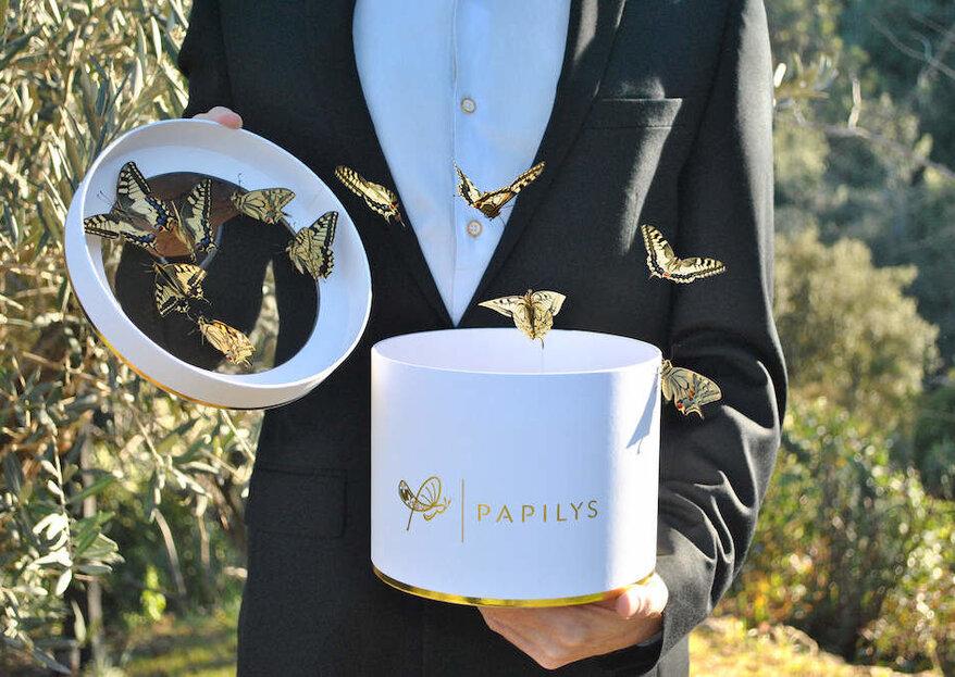 Avec Papilys, offrez un spectacle incroyable à vos invités et faites un geste pour l'environnement