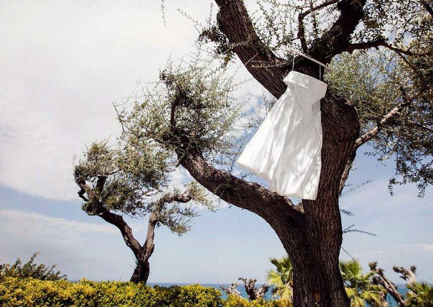 Il significato dell'ulivo nel matrimonio: ispirazione mediterranea per le tue nozze