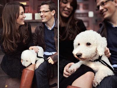 A Surprise Puppy is also a Surprise Proposal