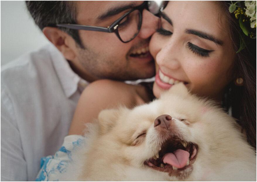 41 Hermosas Frases De Amor Para Dedicarle A Tu Pareja