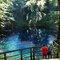 Shirakami Sanchi Blue pond, Aomori