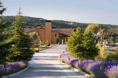 5 increíbles espacios para celebrar tu boda en Madrid: ¡conoce al Grupo Araceli!