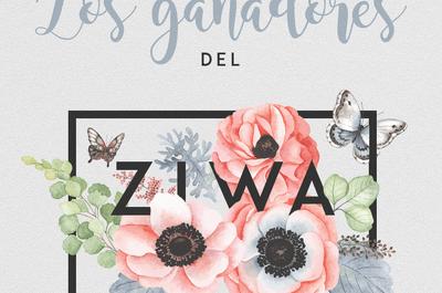 Conoce a los ganadores de los premios ZIWA 2017