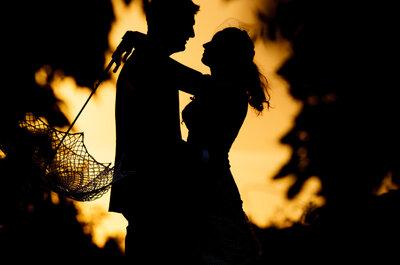 ¿Quieres organizar tu boda? ¡No te pierdas la III Feria Especial Novios 2014 en Olivar de Santa Teresa!