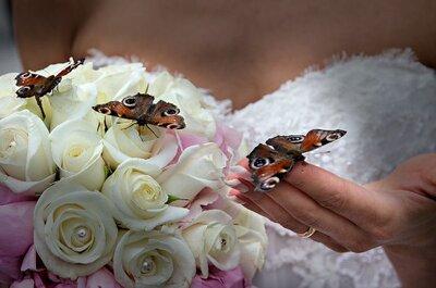 Il butterfly wedding di Roberta & Fabio, un matrimonio davvero speciale