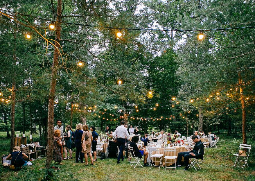 Wie gestalte ich eine unvergessliche Hochzeit im Wald? Wir verraten es Ihnen!