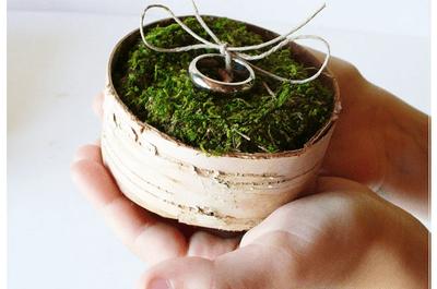 Collage de porta anillos hechos con musgo y naturaleza