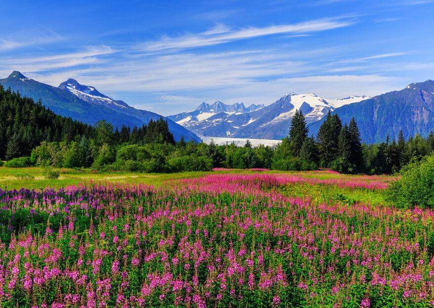 Luna de miel en Alaska: descubre un destino lejano e impactante