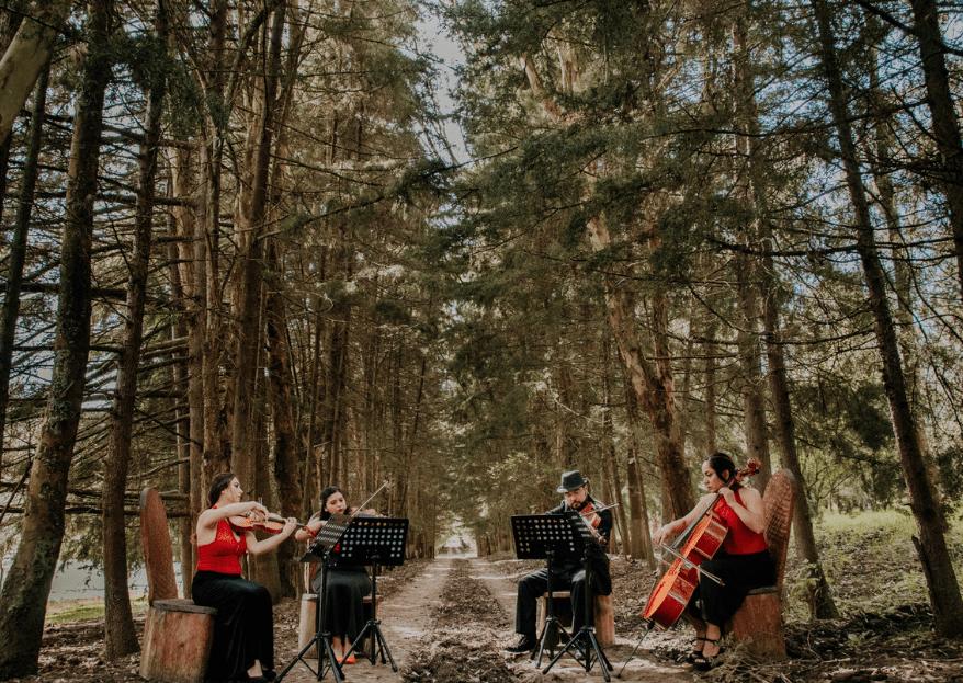 Sensemusic4:el arte de transmitir emociones en tu boda