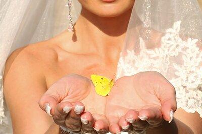 Vlinders loslaten op je bruiloft