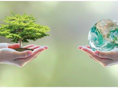 Luce espectacular sin dañar al medio ambiente: ¡5 consejos para conseguirlo!
