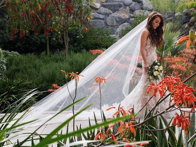 5 cosas que NO debes contar sobre la planeación de tu boda
