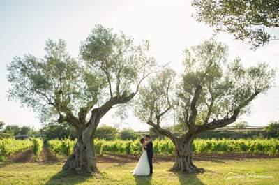 Les meilleurs photographes de mariage des Bouches-du-Rhône