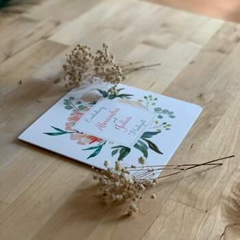 Musterkarten-Set von Paper Studio by Zankyou