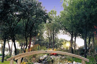 15 ideas increíbles para celebrar tu boda en un jardín de los Jardines de Araceli-Puente Cultural