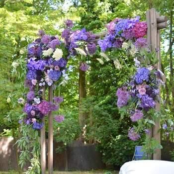 Photo : Reflets Fleurs
