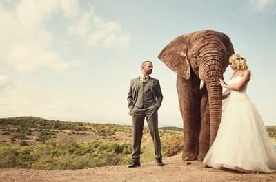 Casarse puede ser muy divertido, ¡mira estas 10 fotografías de novios!