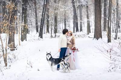 Снежная история: зимнее Love story с хаски