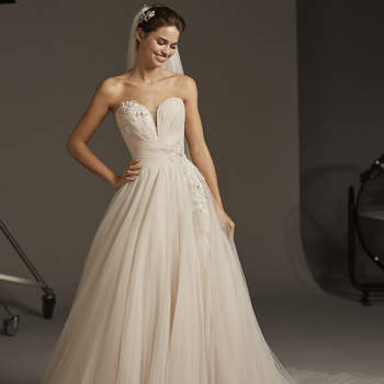 Lacerta- B, Pronovias