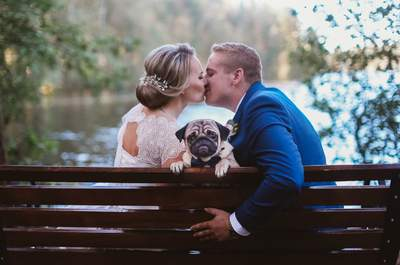 Гармония любви: свадьба Романа и Алены