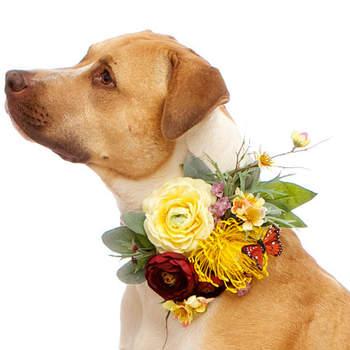 5dd522aa7e68e4 Accessori per cani e gatti per un matrimonio