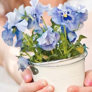 Wiele kobiet ma problemy z utrzymaniem kwiatów doniczkowych- albo nie mają czasu, albo po prostu ich nie lubią (oj, znam wiele takich kobiet!). Niemniej jednak, zdecydowana większość je lubi. Warto więc pomyśleć o zamienniku żywych kwiatów i wybraniu np. obrazu przedstawiającego piękny bukiet. Fot. Flickr.com
