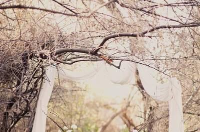 Into the Woods: Wedding Decor Inspiration