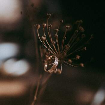 Photo : Julie Blin - Aude Rose