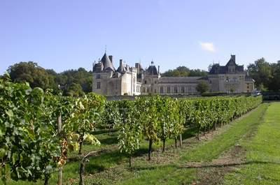 Photo : Château de Brézé