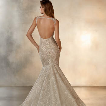Starlight, Pronovias