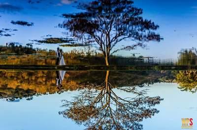 Foto: Daniel Henrique Fotografia