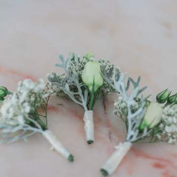<a> Retractus Floral & Paper Design </a>