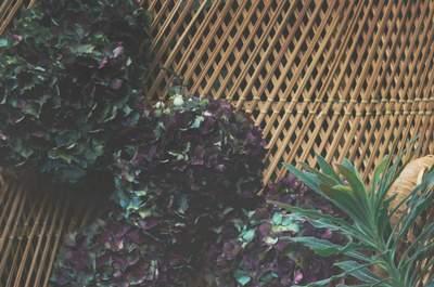 Elise Hameau x Cosmoparis : la collaboration de l'été 2015 qui ne vous laissera pas de marbre.