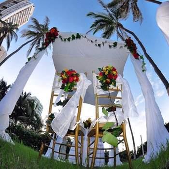 La naturaleza se encarga de aportar la decoración natural para la boda.