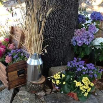 Los elementos más sencillos como cajas de frutas restauradas, antiguas lecheras, botes de cristal y flores, pueden ser indispensables para crear la boda perfecta. Foto: oh!myWedding. http://www.ohmywedding.es/