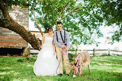 Pets: How to Include them in your Wedding
