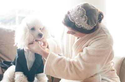 Cuatro cosas que los novios tienen que hacer antes de las fotos de boda