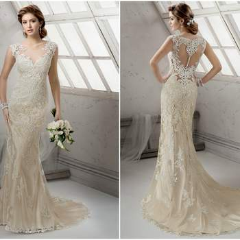 "<a href=""http://www.sotteroandmidgley.com/dress.aspx?style=4SS010"" target=""_blank"">Sottero and Midgley 2016</a>"