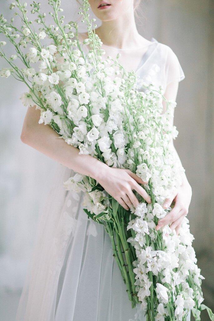 Дельфиниум. Мечты.. Цветы..
