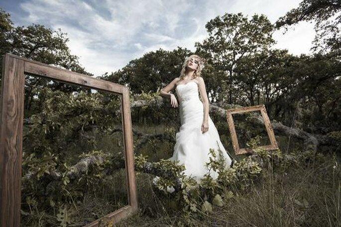 Wedding Media