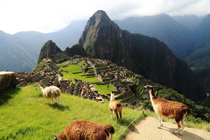 Cusco, Perú - padchas