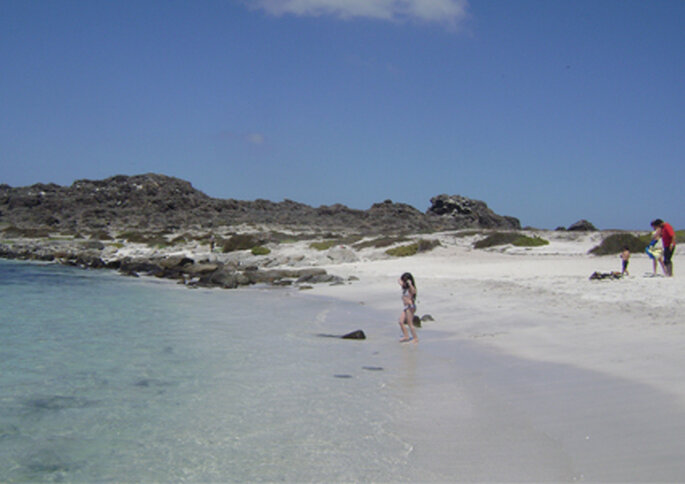 Isla Damas es un punto atractivo que se está volviendo popular entre los chilenos.