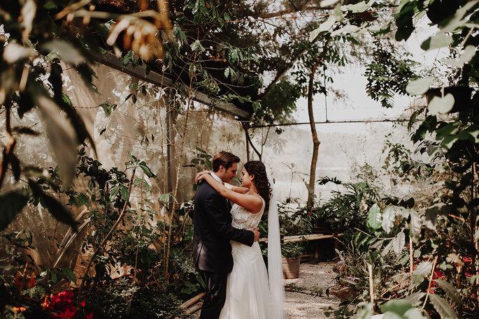 P.D. Love Storyteller foto y video Ciudad de México