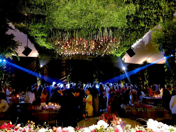 Best Party - Wedding DJ Expert