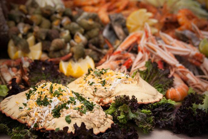 Quinta do Caima - Catering