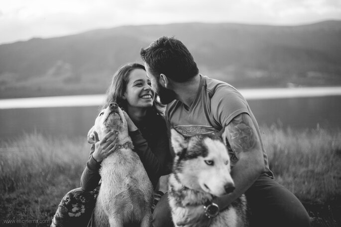 Las 10 mejores razas de perros para tener en pareja. ¡Descúbrelas y enamórate!