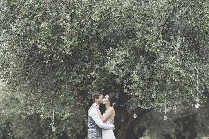 Un bacio da innamorati sotto l'ulivo